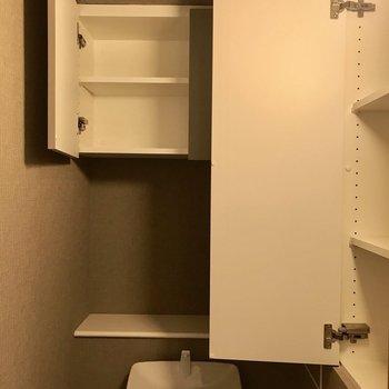 こちらも収納が充実※写真は4階の同間取り別部屋のものです