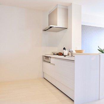 キッチンは家電を置いてもまだスペースにゆとりがあります。