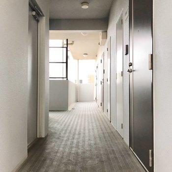 共用廊下もとても綺麗でした。このつきあたりのお部屋です。