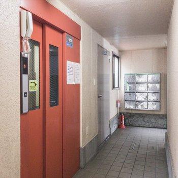 1階の共用スペースです。エレベーターと集合ポストがあります。