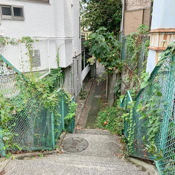 小道は階段で降りていく作り。昔は川だったのかなあ。