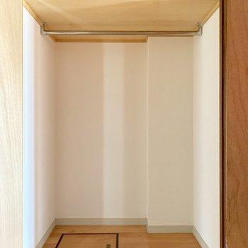廊下部分にこの収納。(※写真は清掃前のものです)