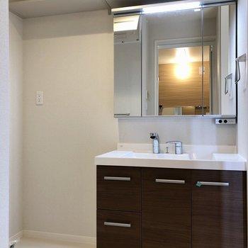 脱衣所には大きな独立洗面台と洗濯機置場。