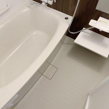 お風呂もゆったりと入れそうな広さです。