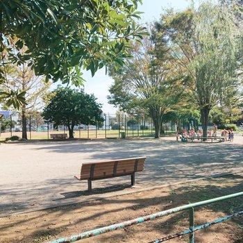 本千葉駅に向かう道すがら、公園を見つけました。癒やし。