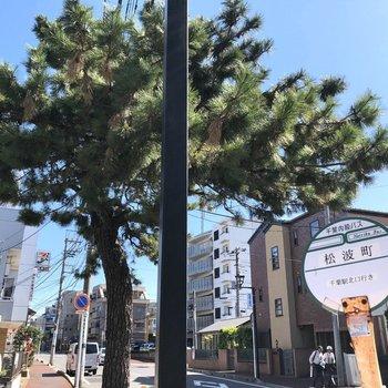 こちらのバス停が近いですよ。今回は駅まで歩いてみましょう。※写真は前回募集時のものです