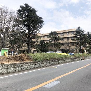 こちらも近くの千葉大学医学部。