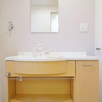 大きな洗面、朝の準備も楽々♪。※写真は、同タイプの別部屋