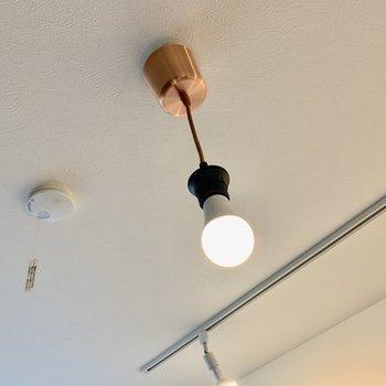 おまけ。豆電球くん。一個でかなり明るい。