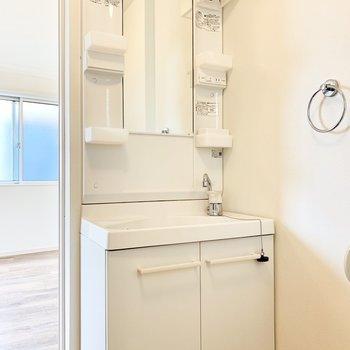 独立洗面台。タオル掛けもついてますね。