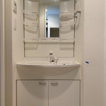 鏡の横に洗顔料や歯ブラシが置ける。