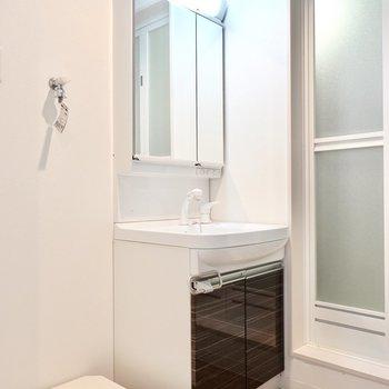 鏡が大きい洗面台。細かいところまで身だしなみがチェックできそう。 (※写真は3階の反転間取り別部屋のものです)