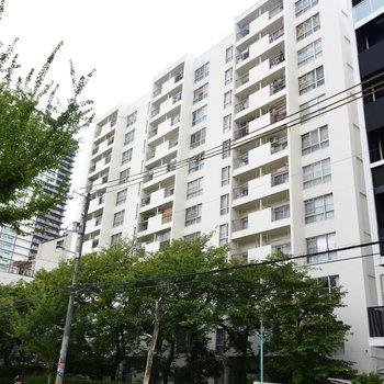住宅街のなかに建つ大きなマンション