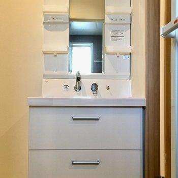 手前に独立洗面台◎収納もついています。