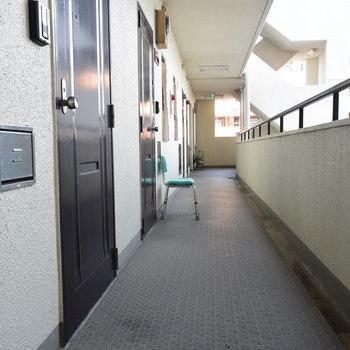 廊下はきれいですよ