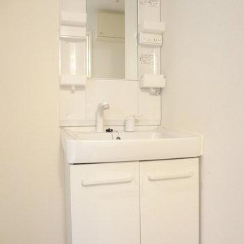 洗面台はドレッサータイプで使いやすそう!(※写真は4階の同間取り別部屋のものです)