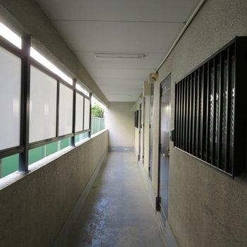 廊下は少し暗めかな?