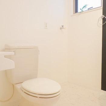 左手にはトイレとパンの無いタイプの洗濯機置き場。