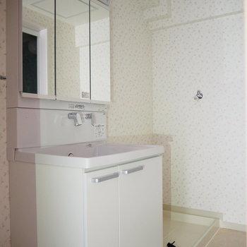 大きな鏡がついた独立洗面台と、室内洗濯機置き場です!