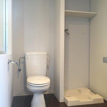 お手洗いの横に洗濯機置場が。※写真は前回募集時のものです