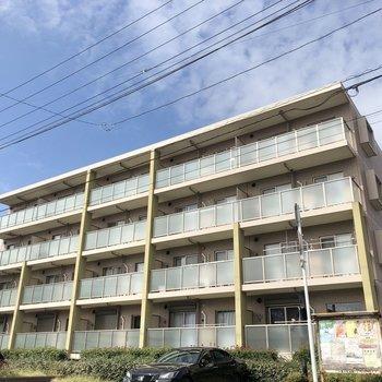 4階建のコンパクトめなマンションです。