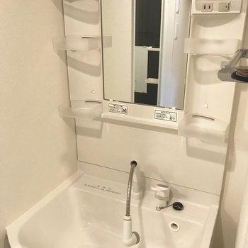 洗面台はシャワータイプで使いやすそう