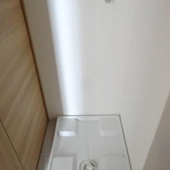 洗濯パンは脱衣スペースに。(※写真は3階の同間取り別部屋のものです)