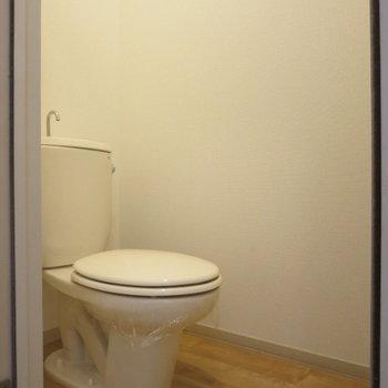 トイレはこじんまりと