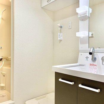 洗濯機置き場の上には、洗剤が収納できます