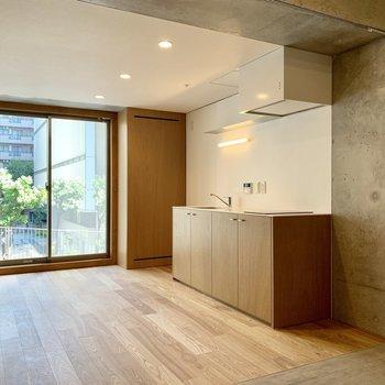 キッチンも大きく、右隣に冷蔵庫を置くのが良さそう。