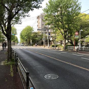 駅まで少し歩きますがこの並木道だったらむしろ楽しい!24時間営業スーパーもすぐそこに。