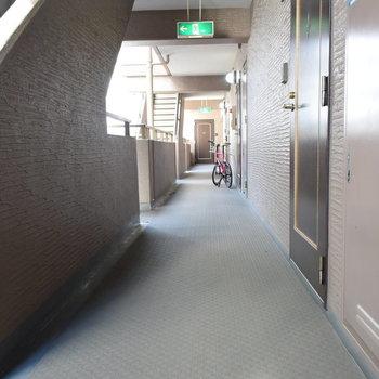 廊下もきれいですよ