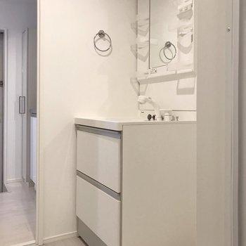 どっしり洗面台には、化粧水や整髪料などたくさん収納できますよ(※写真は清掃前のものです)
