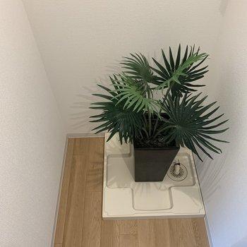 洗濯機の隣に、棚など置けます。※写真は2階の同間取り別部屋のものです