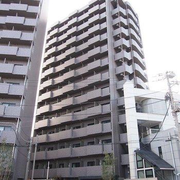ルーブル川崎弐番館