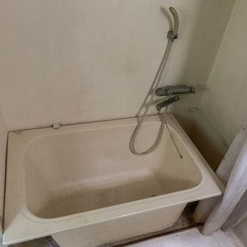 お風呂も同室です。カーテンが付いています。※写真は前回募集時のものです