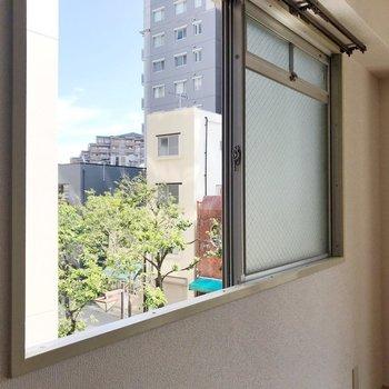 横の窓からは街路樹。グリーンが癒やしです