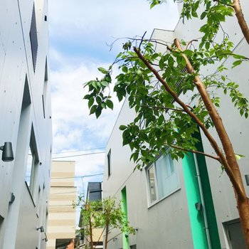 建物間から青空〜!