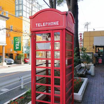 〈おまけ〉電話機のない電話ボックスもありましたぞ。