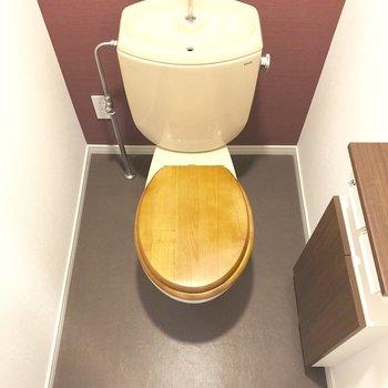 トイレは便座が木でできた珍しいタイプですよ。
