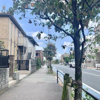 松原駅からは、綺麗に舗装された歩道を歩いて行けます。