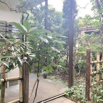 竹の柵が味わい深くて素敵。