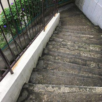 ここから階段です…!