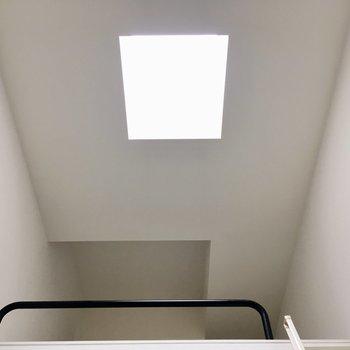 【2階】おー天窓があるからですね。