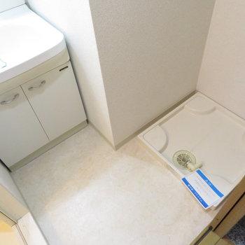 洗面脱衣所も完備です