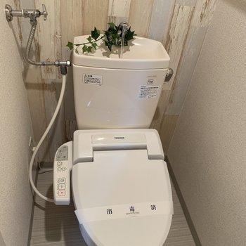 トイレはウォッシュレット付き♪