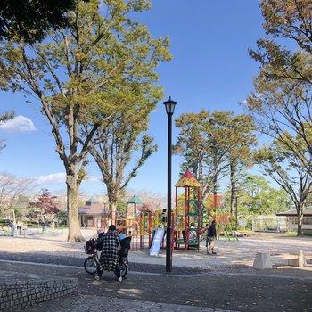【おまけ】公園には遊具も沢山あって、市民プールもあります。このあたりはイチョウ並木があるから、紅葉もきれいなんだろうなぁ〜