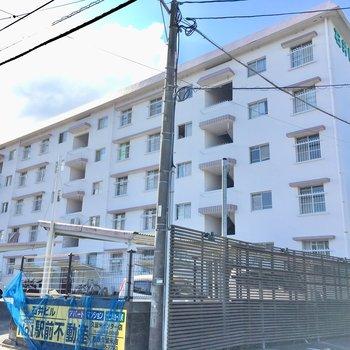 5階建ての団地みたいなマンション。
