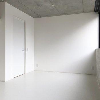 扉の向こうはサニタリールーム