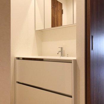 【南側】廊下にどっしり洗面台。化粧品に整髪料など、まるっと入ります(※写真は清掃前のものです)